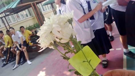 Krit Flower